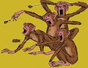 Monkey - Fling Dung