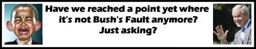 Still Bush Fault Question