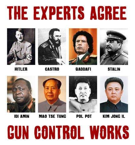 Gun Control - Experts Agree