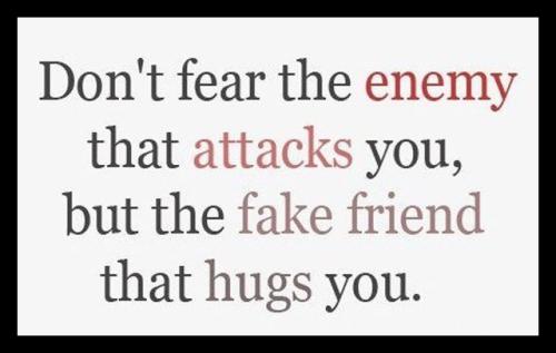 Quote - Fake Friend