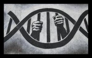Crime - Search and Seizure - DNA Bars