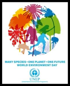 United Nations - Environment Program