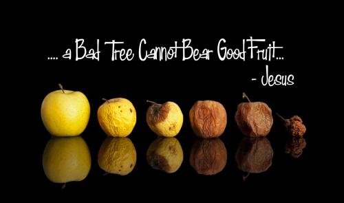 Religion - Christian - Bad Fruit