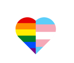 gay-and-transgender-heart